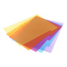 益而高(EaGLE)分类纸 A4易分类 五色索引纸 5页/包